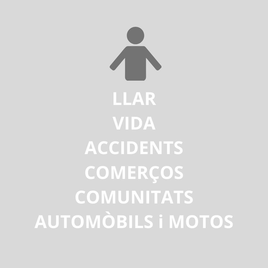 Llar, automòbils, accidents i vida
